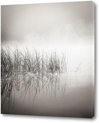 Постер Туман и графика...