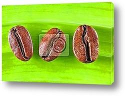 Постер 3 Grains de CafГ©