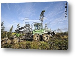 Постер Forest clearing truck