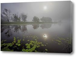 Постер Туманное утро