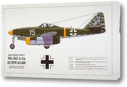 Aircraft - Airshow
