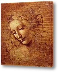 Leonardo da Vinci-11