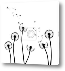 Постер Collection, for designers, plant vector