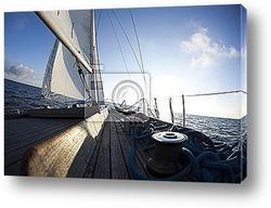 Sun behind white sails
