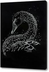 Постер Лебедь на черном фоне