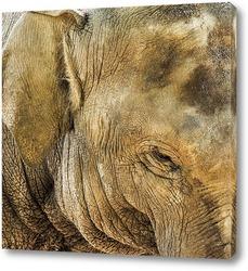 Постер Улыбка слона