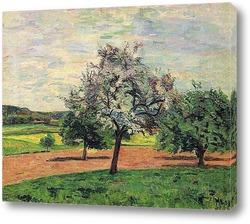 Картина Цветение Яблонь, Иль-де-Франс, 1887
