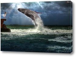 Дрессировщица китов