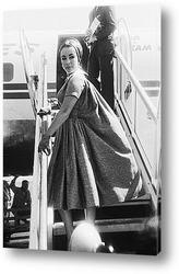 Elizabeth Taylor-12