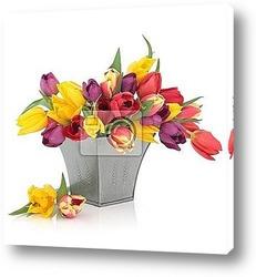 Постер Tulip Flowers