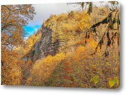 Постер Белые скалы на реке Хоста осенью. (вблизи Сочи)