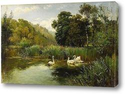 Картина Лебеди в озере