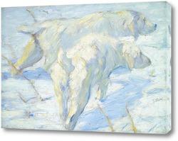 Картина Сибирские Собаки в снегу