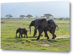 Картина семья слонов