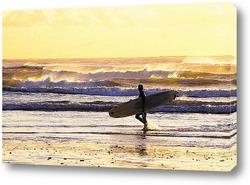 Постер Surfing002