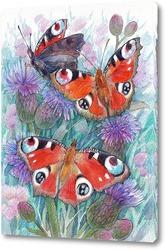 Картина Бабочки дневного павлиньего глаза