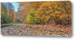 Постер Осенний берег реки Хоста. (окрестность Сочи)