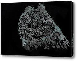 Картина Сова на черном фоне