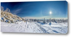 Постер Сибирская Зима