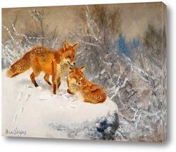 Картина Две лисы в зимний пейзаж