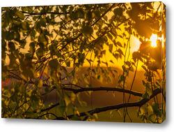 """Картина """"Солнце в ветвях""""."""