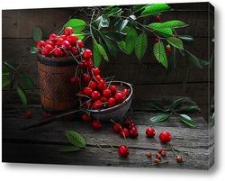 Урожай черешни под ветками.