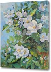 Картина Жасмин цветёт