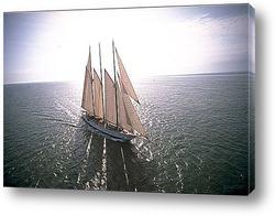 sailer-001