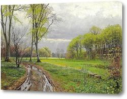 Постер Весенний день с новыми буковыми деревьями и анемонами