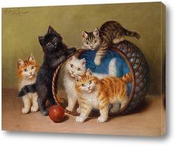 Кошки в корзине