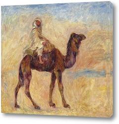 Постер Верблюжий наездник