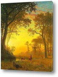 Картина Лучи в лесу