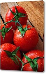 Постер Свежие помидоры