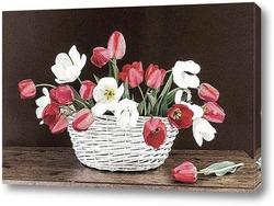 Постер Про тюльпаны