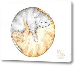 Картина Кошачья гармония