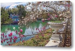Постер Цветение в парке Южные культуры. Адлер