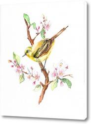 Птица весенняя на ветке акварель
