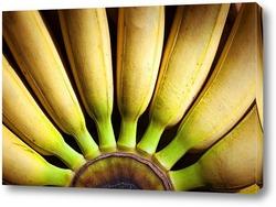 Постер Бананы