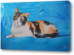 Постер Трехшерстная кошка