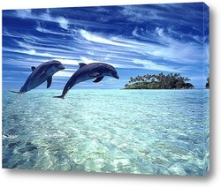 Картина Dolphin062