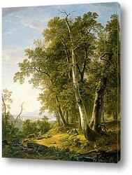 Река Ока,золотая осень