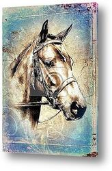 Картина Голова лошади. Рисунок карандашом