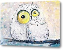 Постер Белые совы
