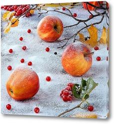 Постер Яблоки на снегу.
