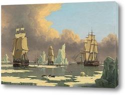 Постер Охота на китов на севере: «Лебедь» и «Изабелла»