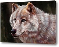 Картина Белая волчица