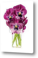 bunch of flowers pansies in a jar of glass