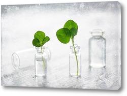 Постер Мини натюрморт с маленькими бутылочками