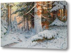 Зимняя Лесистая местность в Солнечном свете