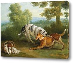 Гончий пес